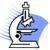 Sputum Microscopy